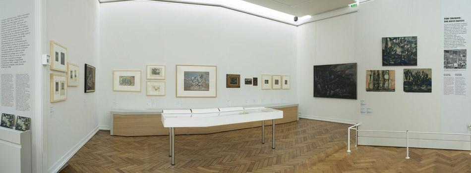 Vue de l'exposition Fédor Loevenstein - Bordeaux, Musée des Beaux-Arts, 2014
